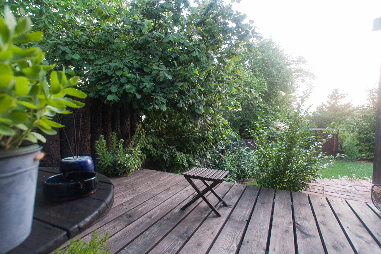 Relaxing garden views from the terrace